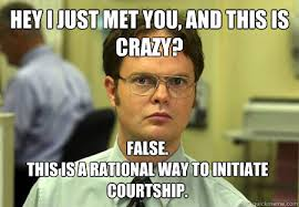 """Hey I just met you, and this is crazy? False. This is a rational way to initiate courtship"" Dwight Schrute."