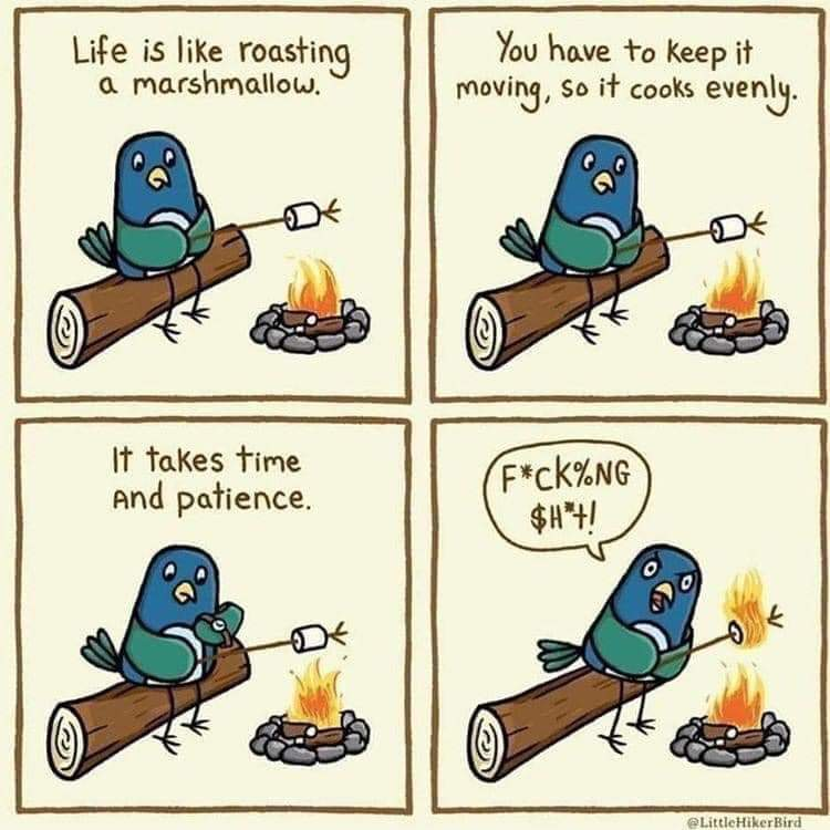 Life is like roasting a marshmallow. You have to keep it moving, so it cooks evenly. It takes time and patience. (marshmallow catches on fire) F***ing S***.