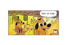 """The meme with the dog sitting in a room that is on fire and it says """"this is fine."""""""