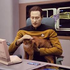 Data and his orange cat, Spot.