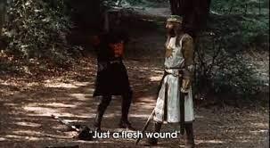 """Monty Python """"it's just a flesh wound"""""""