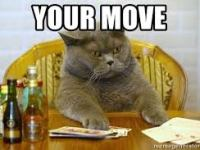 """A cat playing poker with the words """"your move"""" at the top"""