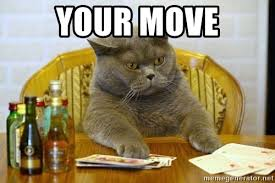 "A cat playing poker with the words ""your move"" at the top"