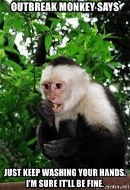 monkey from outbreak