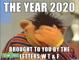 "The year 2020, brought to you by the letters ""w, t, and f"" - sesame street"