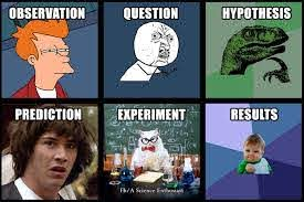 Scientific method in memes: observation, question, hypothesis, prediction, experiment, results