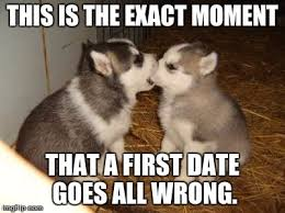 this is the exact moment the first date goes all wrong (one dog has his mouth over the other dog's nose)