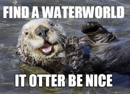 "an otter saying ""find a waterworld. it otter be nice"""