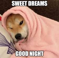 sweet dreams, good night puppy.